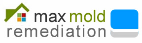 Max Mold Remediation