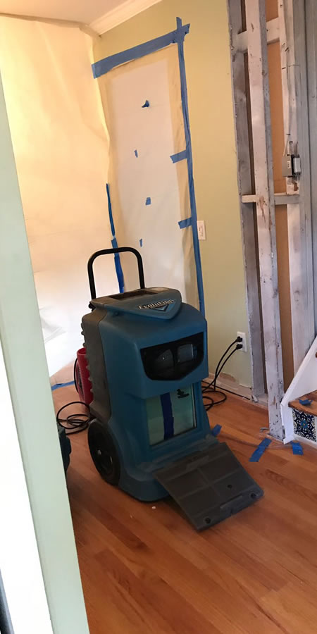 Mold cleanup by Kingsbridge